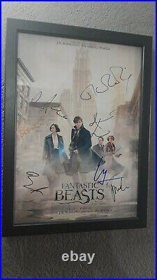 Poster Fantastic Beast Where Find Them signed framed prop Harry Potter